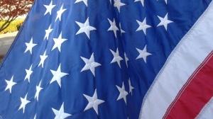 Flag_11112014
