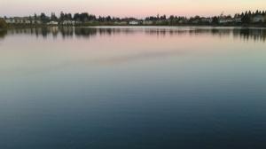 Pink_on_lake
