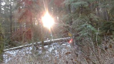 Shellburg sun peaking